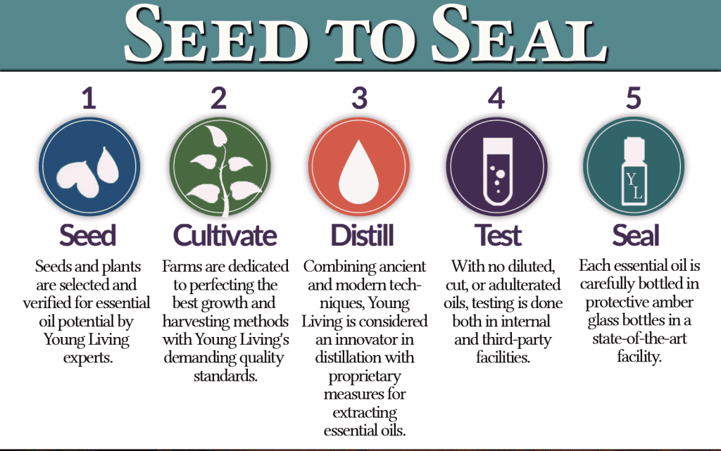 seed to seal - essential oil process