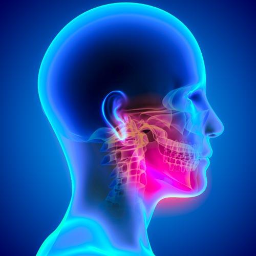 TMJ Side Profile